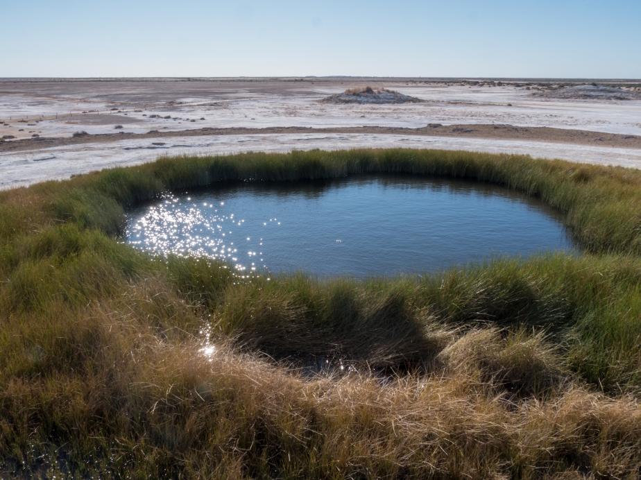 Mound Spring